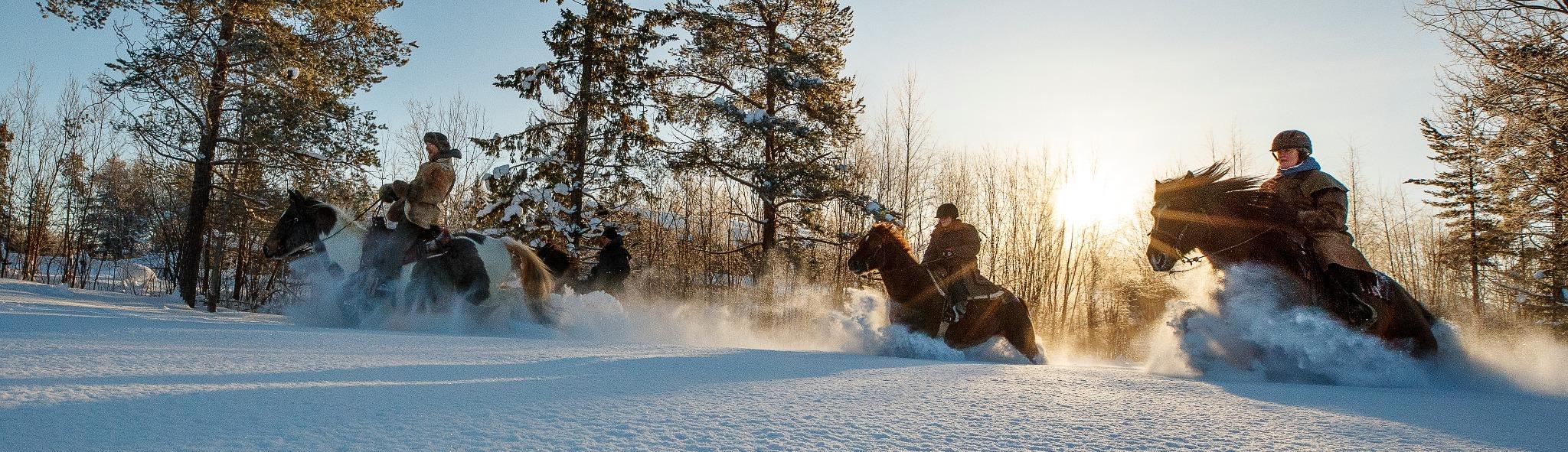 Till häst över snötäckta vidder