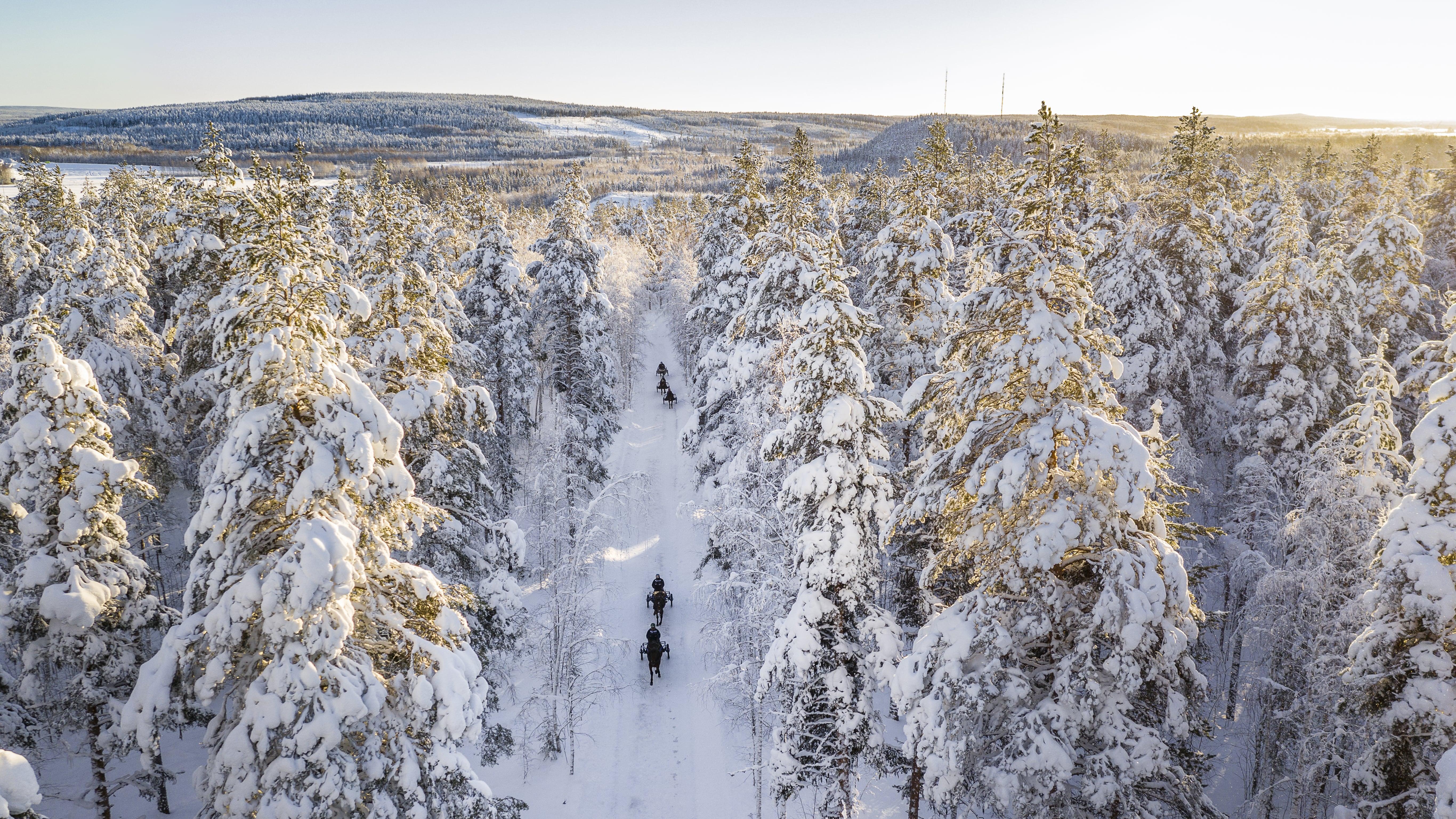 Fina banor i häststaden Boden, ett reportage från Boden Bild nummer 1 2019