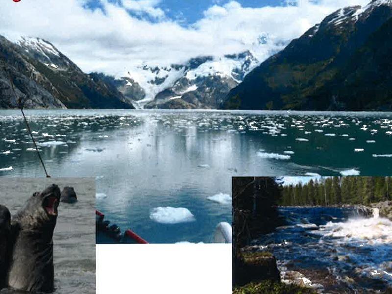 Skogsälv i norr och natur vid världens ände