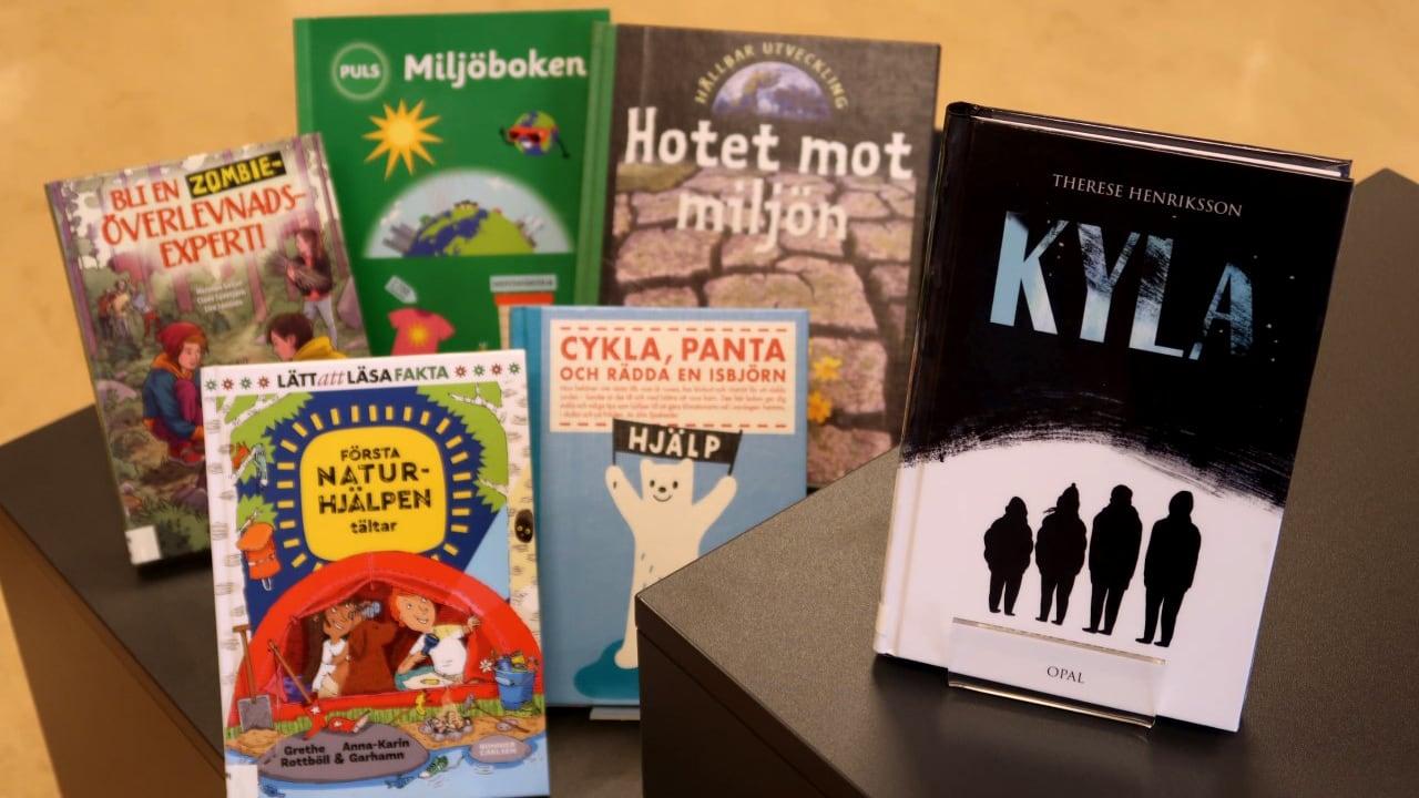 Biblioteken i Norrbotten funderar på framtiden