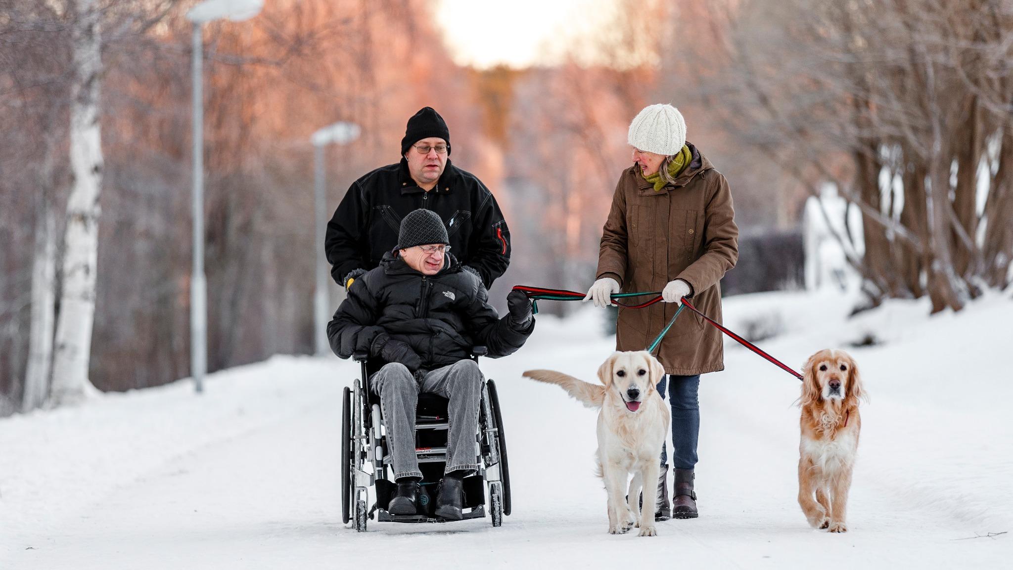 en man sittandes i rullstol håller i koppel till två hundar. En kvinna håller också i kopplen och en man skjuter rullstolen framåt i ett vinterlandskap.